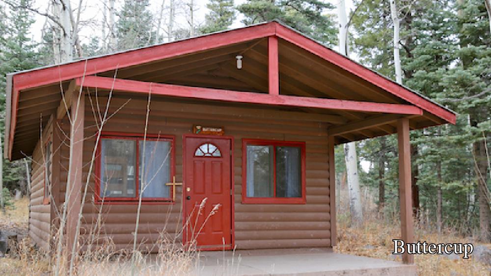 Cabin- Buttercup