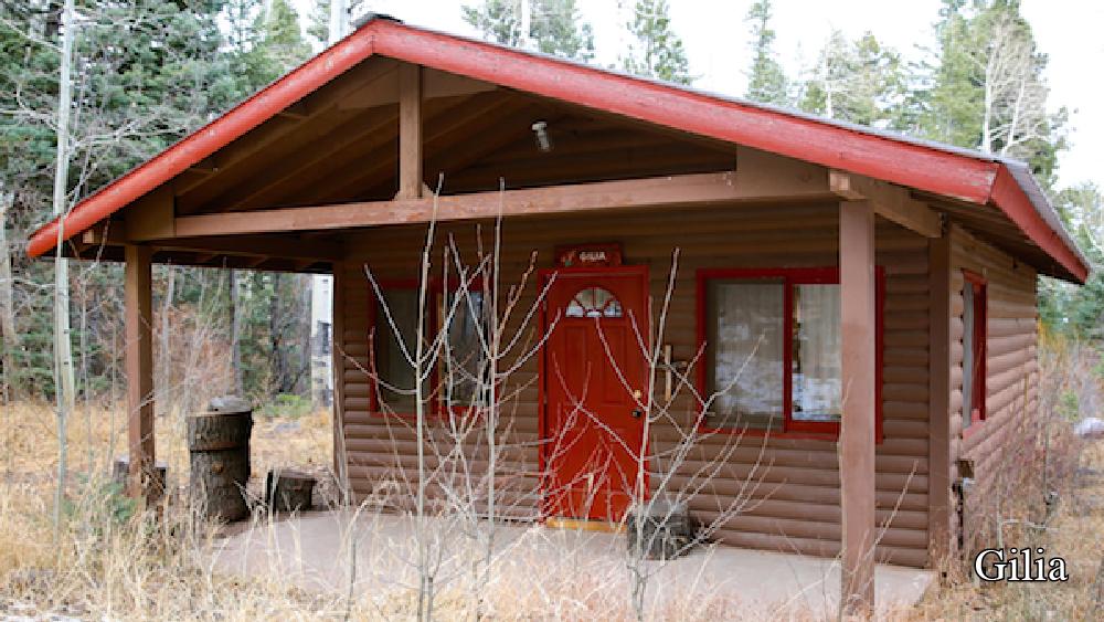 Cabin- Gilia