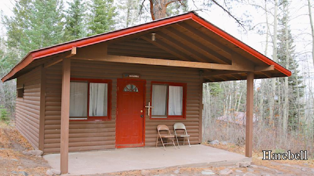 Cabin- Harebell 1