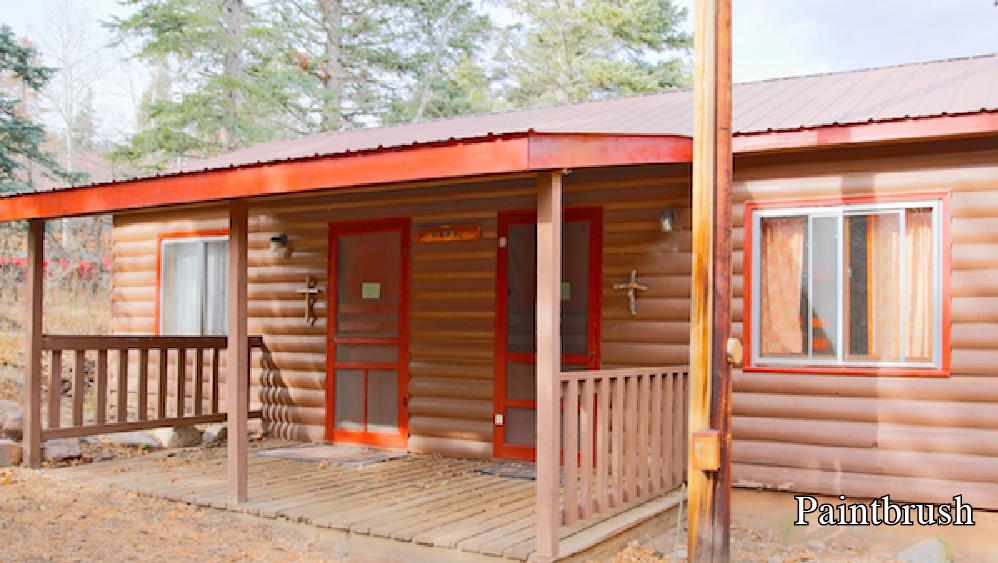 Cabin- Paintbrush