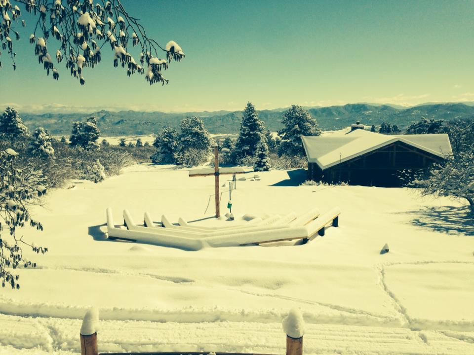 Snowy Fircle